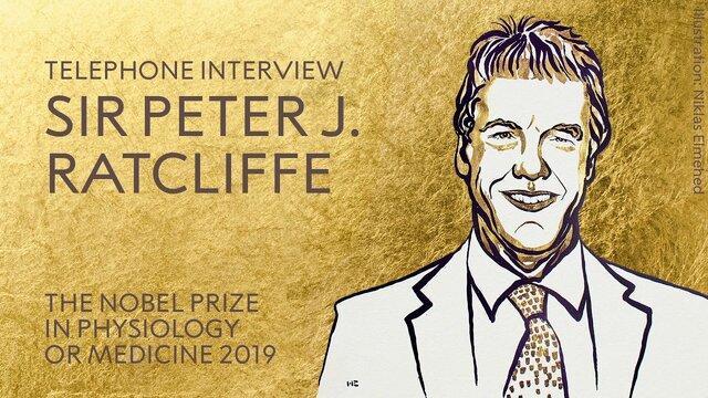 برنده نوبل پزشکی 2019: کار ما تولید دانش است