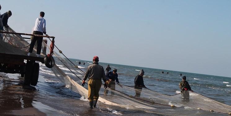 نجات گونه ماهی آزاد دریای خزر با استفاده از پیوند سلول های بنیادی