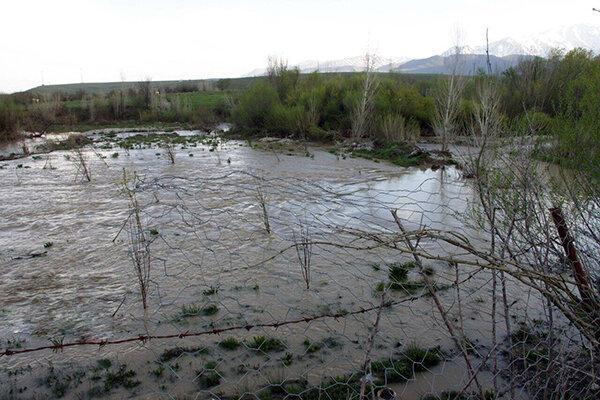 هواشناسی بوشهر نسبت به وقوع سیل هشدار داد